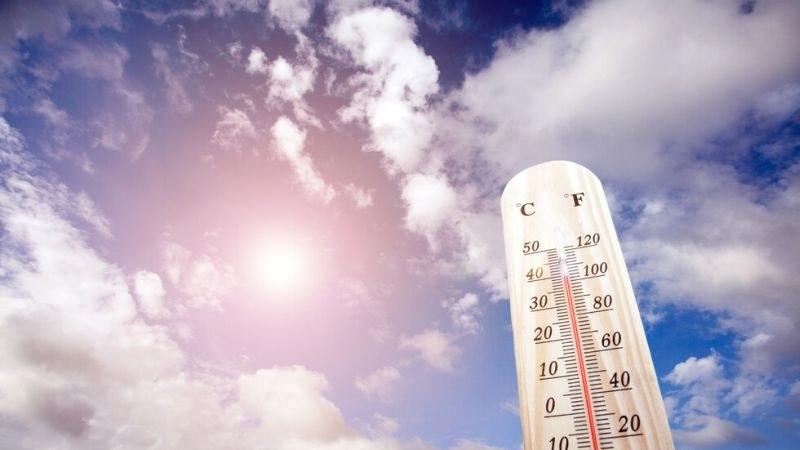 Януари 2020 г. - най-топлият, откакто се водят статистики