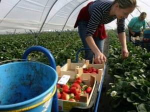 Великобритания въвежда точкова система за чуждестранните работници