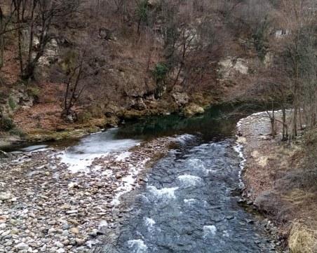 Извънредно: Нова отровена река край Пловдив!