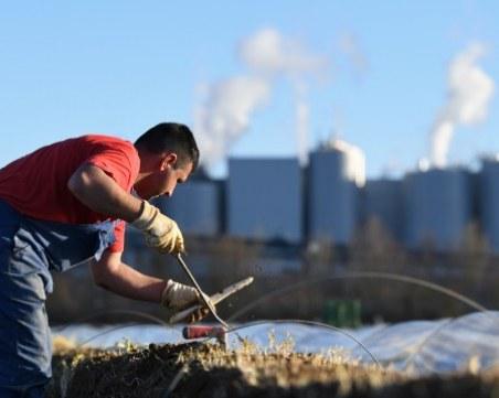 Молдовец спипан да работи