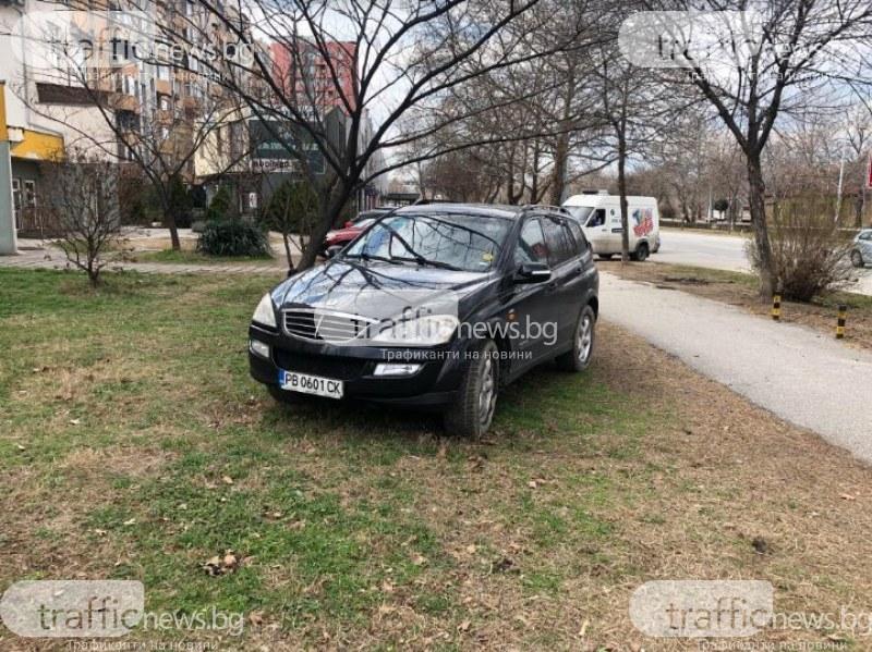 След сигнал на TrafficNews: Глобиха шофьора, нагазил градинка в Пловдив