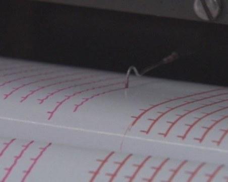 Силно земетресение удари остров в Индонезия