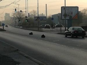 Препятствие на пътя! Черни чували с боклук се търкалят по пловдивски булевард