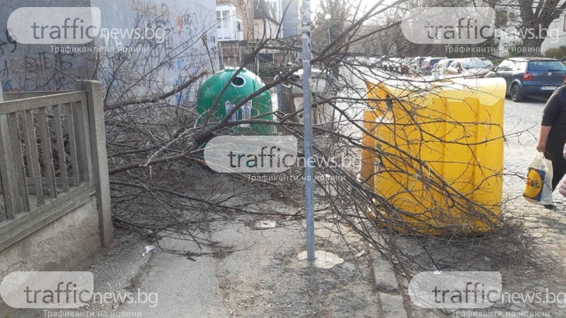Заградиха тротоар до учебно заведение в Пловдив с купища боклуци