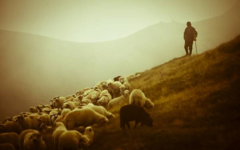 Присъда за пастира, заплашил със смърт и взел ключовете на беззащитен мъж в Пловдивско