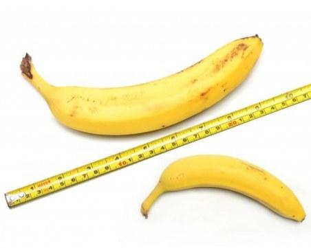 Науката обяснява: Има ли значение размерът?