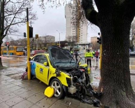 Такси помете четири коли в София и се заби в дърво