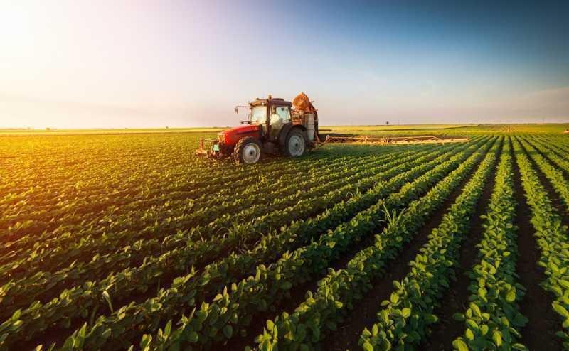 Пазарът на земеделска земя у нас: добър ли е моментът за инвестиция?