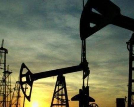 Суровият петрол поевтиня с почти 50%