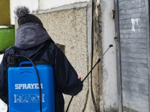 Правят масова пролетна дезакаризация в Пловдив