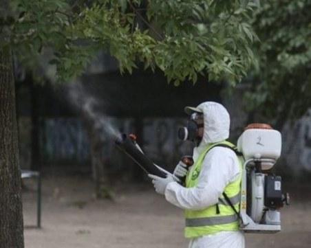Пръскат срещу насекоми в Пловдив