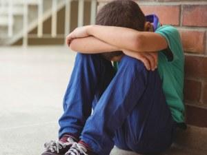Агенцията за закрила на детето започва онлайн проверки