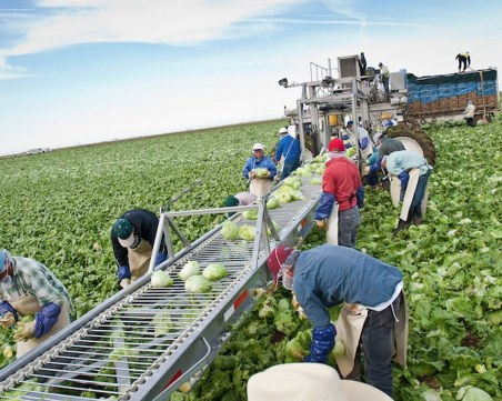 40 000 работници от Източна Европа отиват в Германия въпреки пандемията