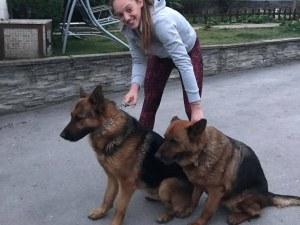 Домашните любимци на Марица - немски овчарки радват Доби Христоскова