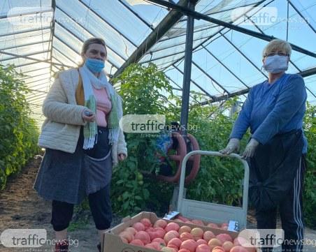 Производители от Пловдивско поискаха прокуратурата да влезе в хипермаркетите