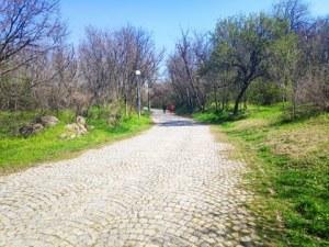 Ще се отворят ли парковете в Пловдив? Кметовете на големите градове отиват при Борисов