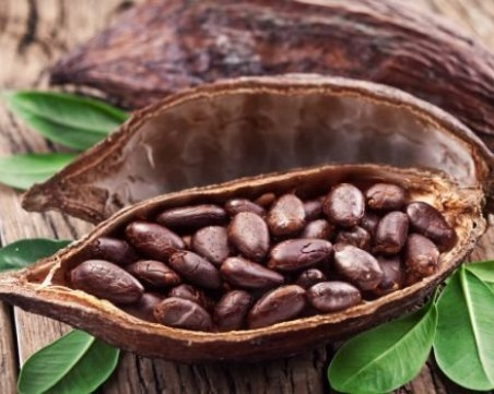 Какаовите зърна – изключителен афродизиак