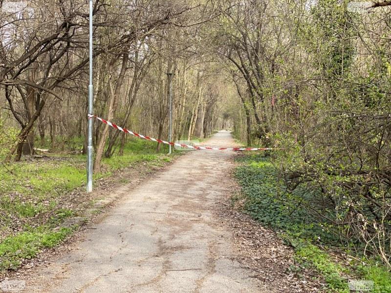 Отварят 9 зони за разходка в Пловдив! Вижте кои са те