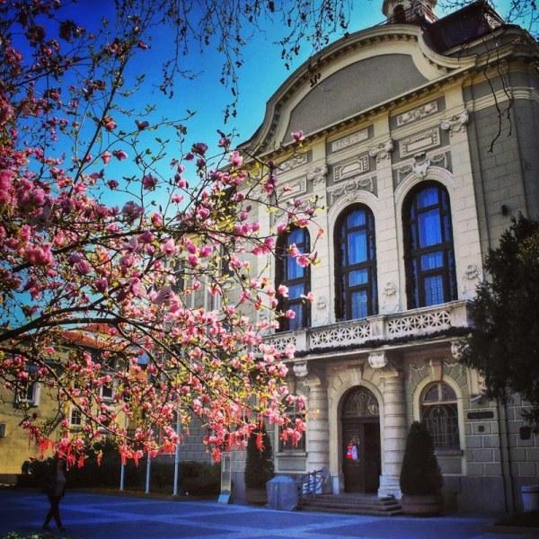 Освобождават от наеми за общински помещения културните оператори в Пловдив