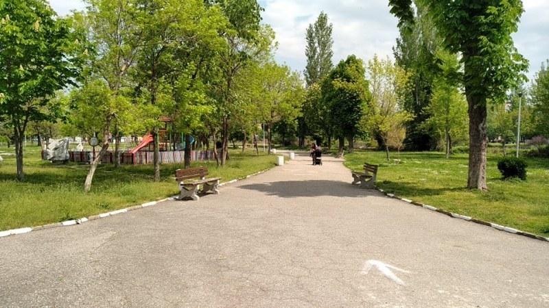 Градският парк в Асеновград остана без цветя, откраднаха ги