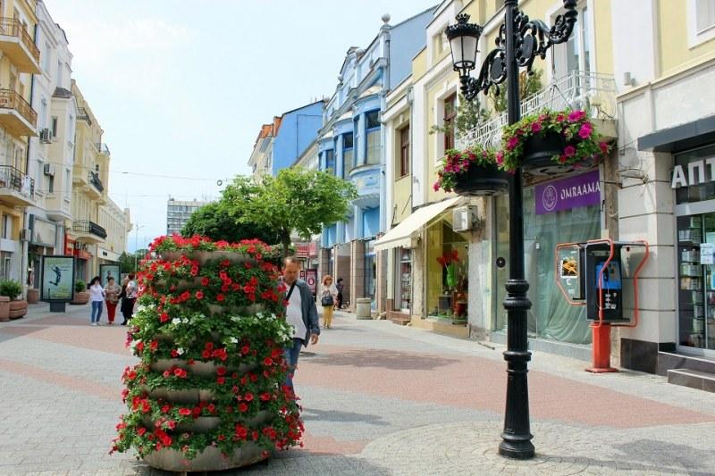 Цветна приказка в центъра на Пловдив
