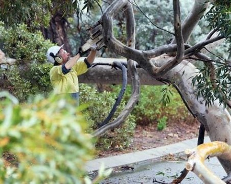 Най-силната буря на десетилетието остави 50 000 домакинства в Австралия без ток