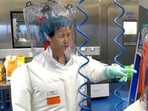 Жената прилеп: Вирусът, открит в Ухан, няма нищо общо с COVID-19