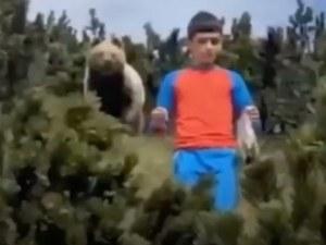 12-годишен запази невероятно хладнокръвие след среща очи в очи с кафява мечка