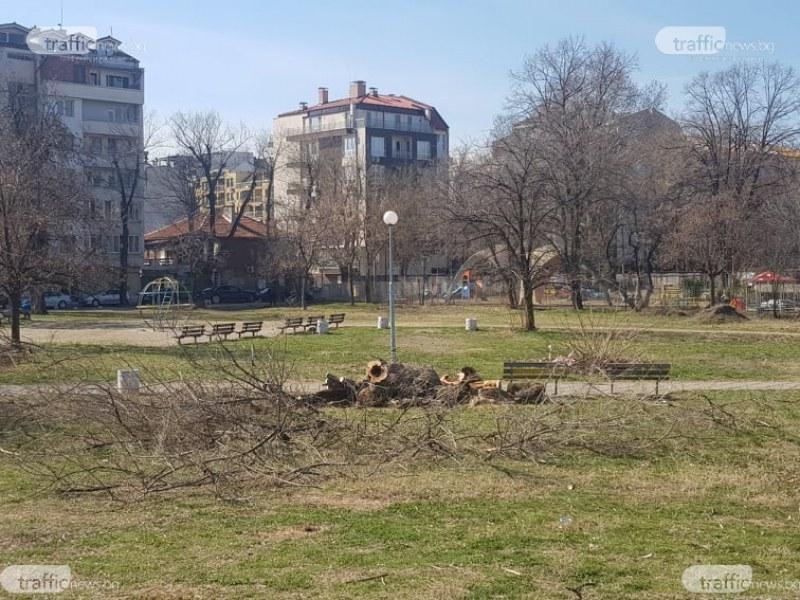"""Общината в готовност да почисти парка зад  хотел  """"Санкт Петербург"""