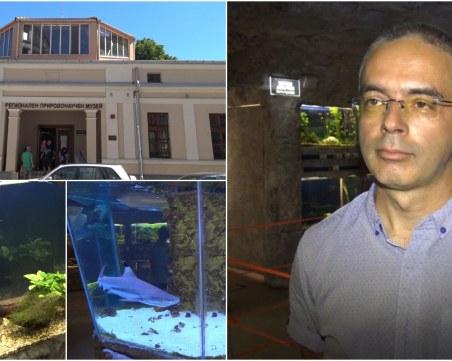 Най-големите морски аквариуми в България ще бъдат скоро в Пловдив
