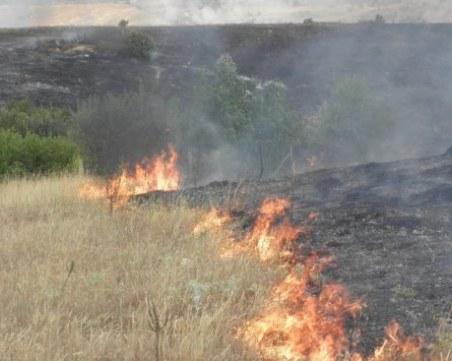 Пожар унищожи 300 декара пшеница край Перущица