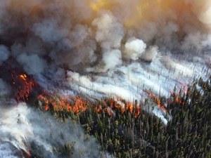 Голям пожар в европейска Турция, евакуират хора