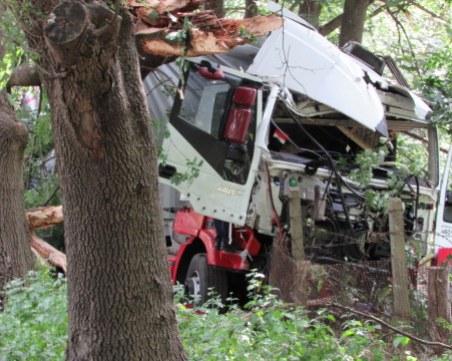 Камион излезе от пътя, изкорени дървета и отнесе ограда