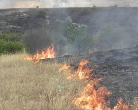 Пожар унищожи 100 декара житната култура край Хисаря