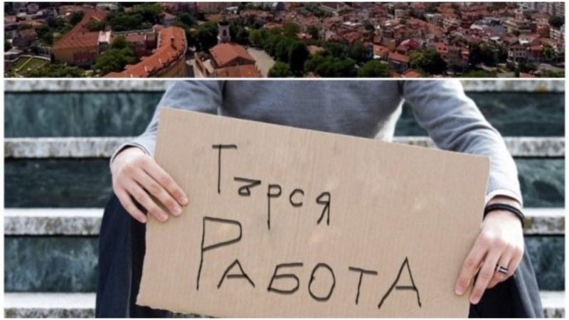 Бюрата по труда в област Пловдив обявиха новите работни места за тази седмица