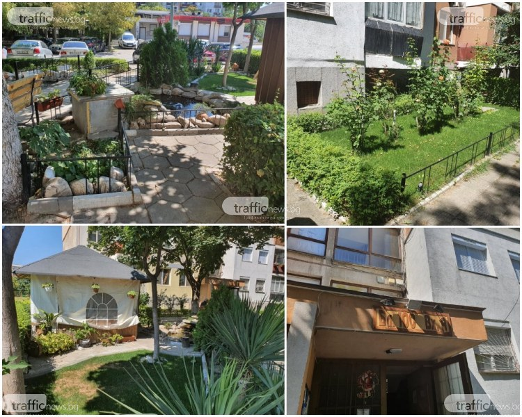 За чудо и приказ: Пловдивчани създадоха малък оазис в Тракия