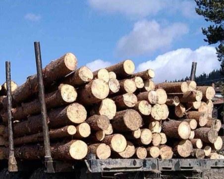 Спипаха двама дървосекачи в Пазарджишко с незаконен дървен материал