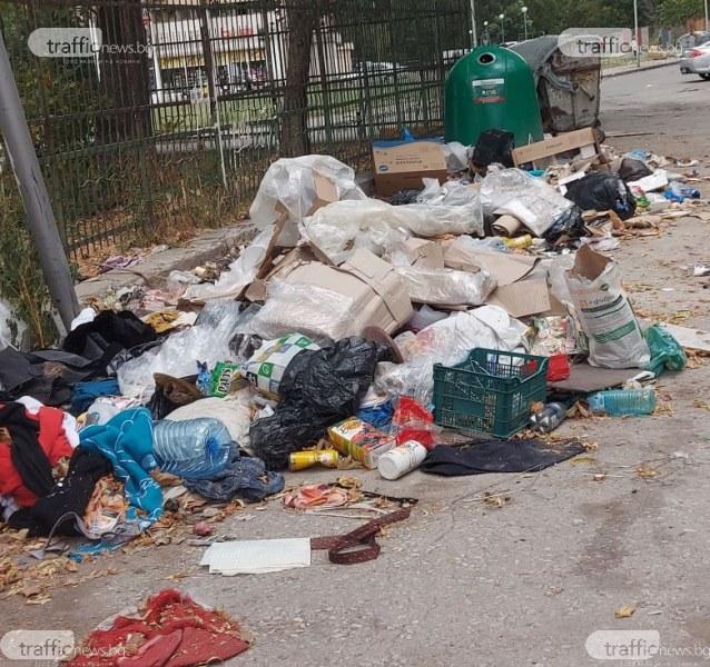 След Курбан Байрам - боклуци и животински остатъци на паркинга пред Малкия гигант