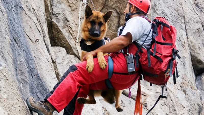 Туристи се изгубиха в Стара планина край Сопот