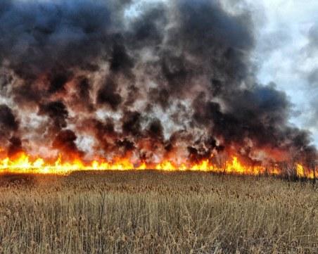 Пожар край магистрала