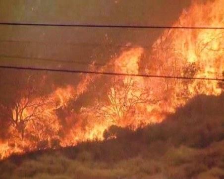 Пожар бушува в Южна Калифорния, евакуират населението