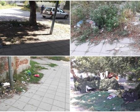 Катун и мини сметища посрещат клиентите на държавни институции в Столипиново