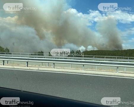 Голям пожар на АМ
