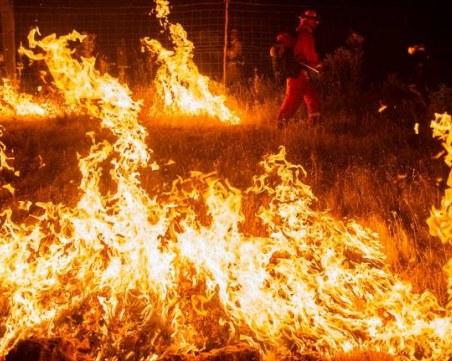 Пожарът край Лесово премина река Тунджа, обстановката - усложнена