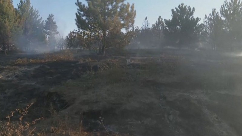 Пожарът край границата: Овладян от три страни, огънят е обхванал около 50 000 дкра