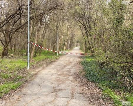 Стрелба в пловдивски парк след бой между две ромски групи