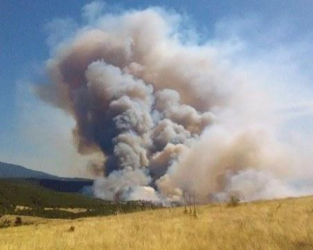 Овладяха големия пожар край Хасково
