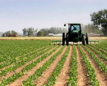 Земеделските стопани вече могат да кандидатстват за извънредните Covid мерки