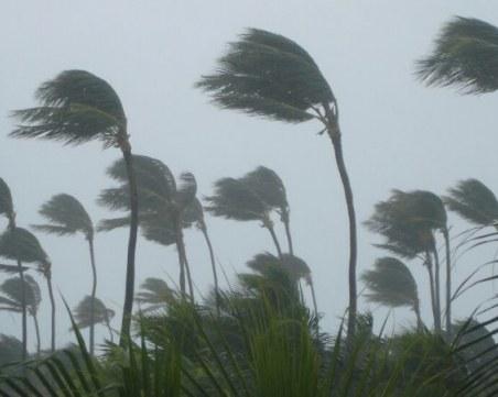 Извънредно положение в Тексас заради тропически бури