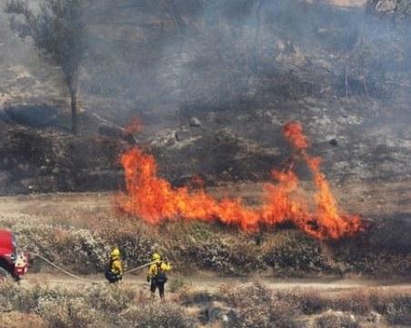 След цяла нощ гасене: Ограничиха големия горски пожар край Свиленград